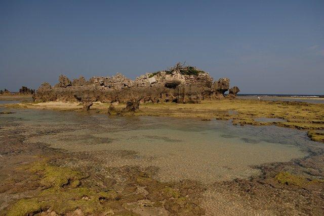 【奇葬】ヤドカリ葬の島『ニャーデバナ』、現地民が絶対に近づかない奄美大島の聖地を取材! 「肉を吸い取る音が聞こえてきた」の画像4