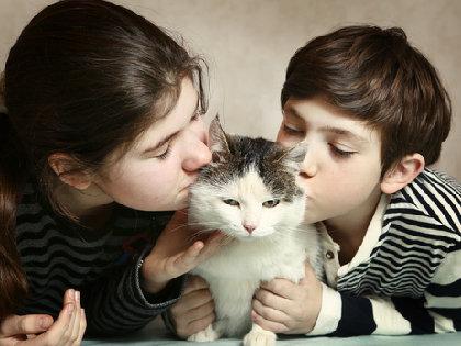 猫からの感染症で60代女性が死亡 厚労省「ペットとの濃厚な接触は避ける」よう注意喚起の画像1