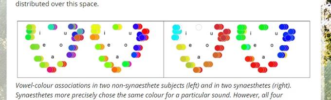 【衝撃】あなたの名前が何色かが科学調査で判明! 赤、青、紫…母音には共通の色の共感覚があった!の画像2