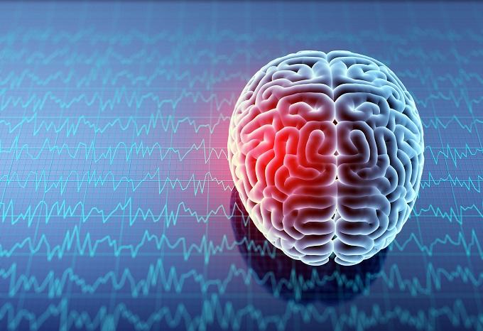 【ガチ】人間は地震予知能力を持っていることが科学で判明! 磁気を受信する第6感の存在が確認される!の画像1