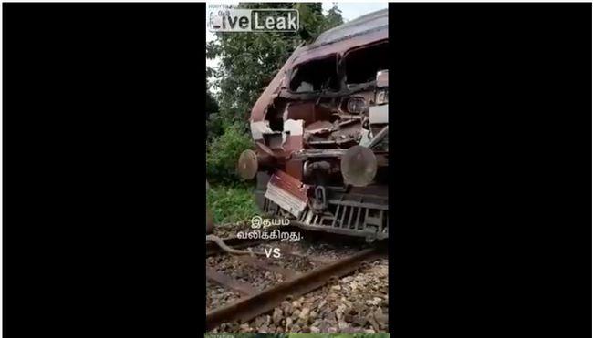 【閲覧注意】列車とゾウが衝突するとこうなる! ボロボロの瀕死状態で懸命に線路から立ち退こうとする姿に涙…!!!の画像4